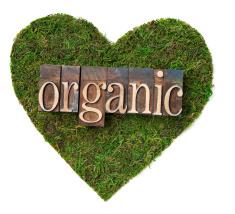 stock-photo-18991878-organic